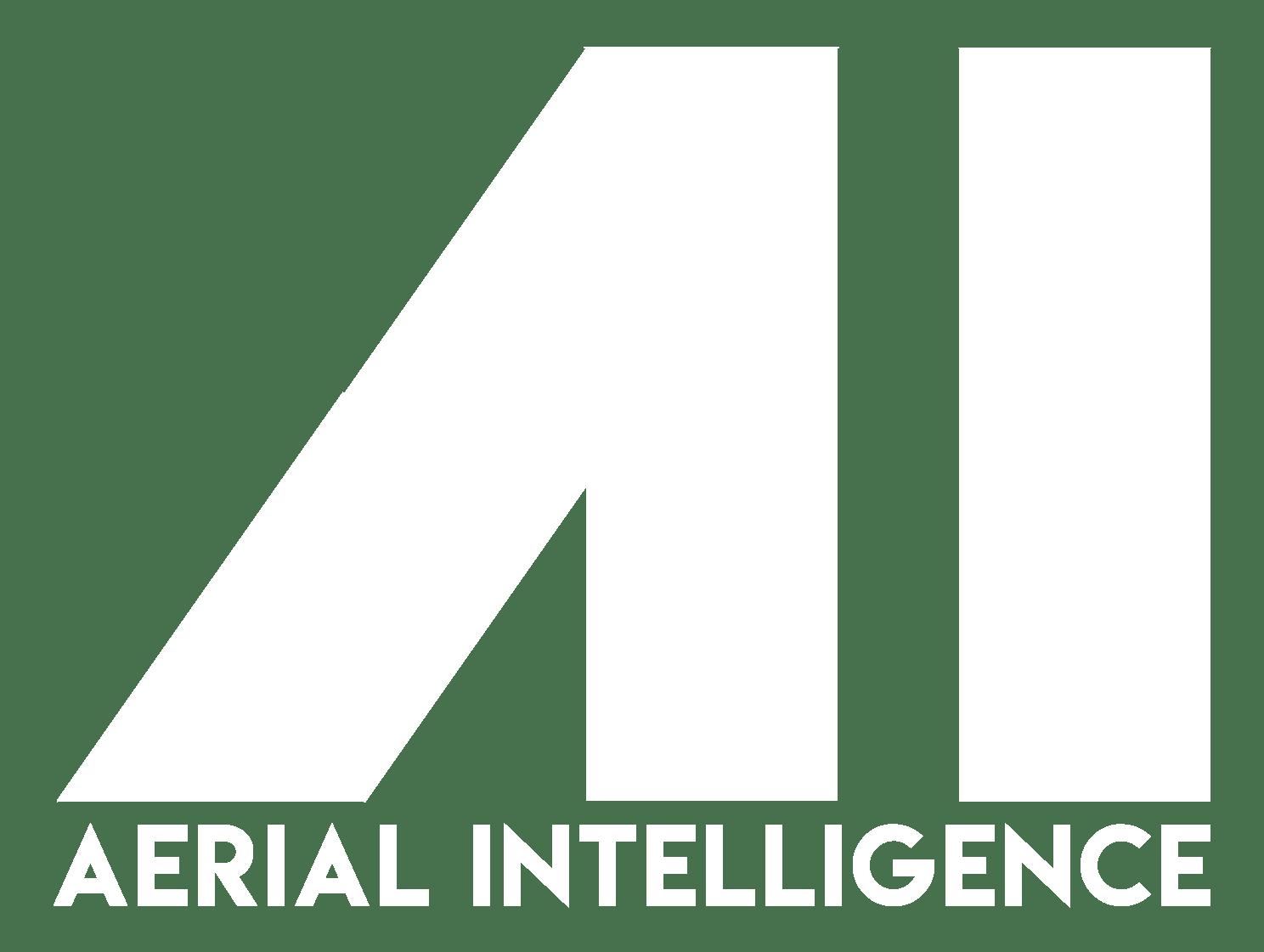 Aerial Intelligence